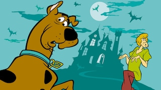 The Scooby Doo Show<br>